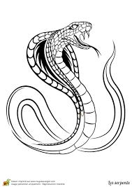 Coloriage D Un Serpent Cobra