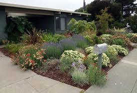 Small Picture Low Water Garden Design Landscape Designer San Anselmo Dig Your