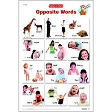 Apple Tree Opposite Words Chart