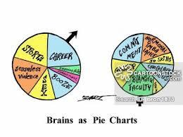 female brain cartoons and comics funny pictures from cartoonstock female brain cartoon 1 of 8