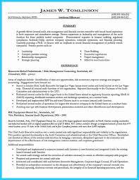 Night Auditor Resume Authentic Internal Auditor Resume Sample