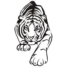 Small Picture Tiger Coloring Pages 570 1200847 Free Printable Coloring Pages