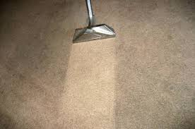 reno carpet cleaning deep sn removal