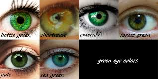 Different Shades Of Blue Eyes Chart Green Eye Color Reference Chart 10 Points To Anyone Who