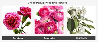 types of flowers in bouquets. this image shows some examples of flower types popular at weddings - these flowers tend to in bouquets t