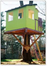 Kauri tree house plans Treehouse Guides