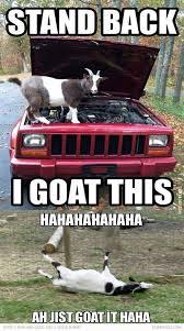 Goat Quotes Unique 48 Goat Quotes 48 QuotePrism