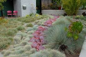 Small Picture Dry Garden Design Grace Design Associates Goleta Ca Merit Apld