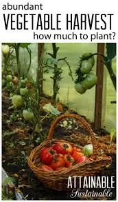 Kitchen Garden Preserves 17 Best Images About Vegetable Gardens Growing Food On