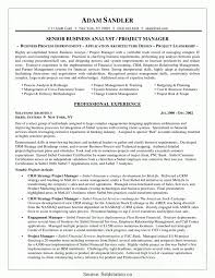 Great Project Analyst Cv Resume Objective Business Analyst