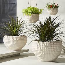 statement making large outdoor planters