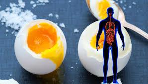 Eieren per dag