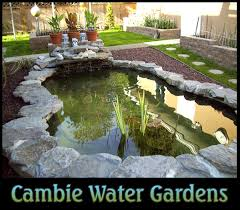 Small Picture 17 Best Images About Koi Pond On Pinterest Backyard Ponds Orange