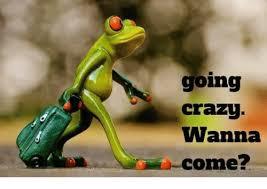 crazy memes and going crazy wanna e