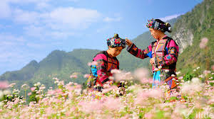 Image result for HÀ GIANG