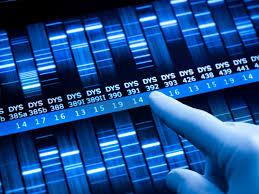 Triptans Comparison Chart Genetic Risk Score Predicts Response To Triptans For