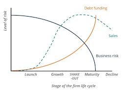Organizational Life Cycle Chart Business Life Cycle Understanding The 5 Different Stages