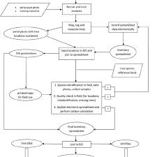 Flow Chart Showing The Tree Inventory Process Using A Gis
