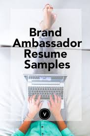 Professional Resume Help 100 best Landing Your Dream Job Resume Help and Interview 51