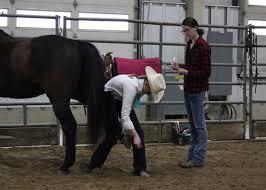 Horsemanship Level Testings June 5 Register By May 29 Announce