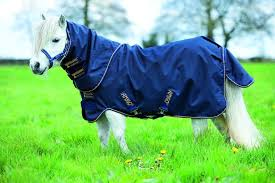Horseware Amigo Petite Plus Lite Turnout Rug For Miniature Horses And Miniature Shetland Ponies