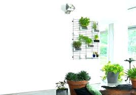 wire wall planters indoor living wall planter hanging wall planters indoor m indoor living wall planter wire wall planters