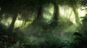 jungle background. Interesting Jungle Jungle Background  Google Search Intended Jungle Background E