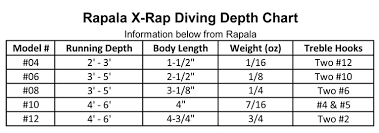 Reef Runner 800 Depth Chart Rapala X Rap 06 Purple Gold Precision Fishing