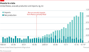 Daily Chart Americas Avocado Supply Is Set To Tighten