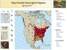 2017 Hummingbird Migration Chart Analyzing Spring Migration Data
