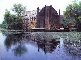 home of themarsh arabs made of reeds