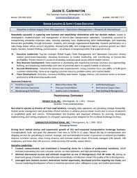 It Manager Resume Sample Examples Project Pdf Format Infrastructure
