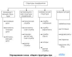 Инфраструктура предприятия Производственная структура и  Производственная структура и организационная структура управления предприятием