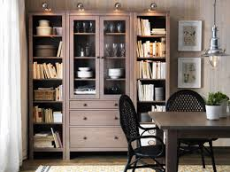 Living Room Cabinets With Glass Doors Choice Living Room Gallery Living Room Ikea