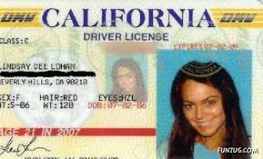 Id's Worst Worst Fake Ever Id's Fake Ever Worst Id's Ever Fake Worst