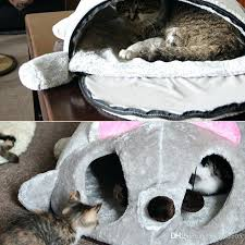 waterproof cat house waterproof cat shelters for kitties shelter cat and animal outdoor