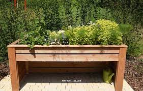 elevated garden beds what you must