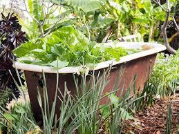 vintage clawfoot turned bathtub planter