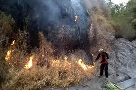 Hasil gambar untuk gunung ciremai kebakaran