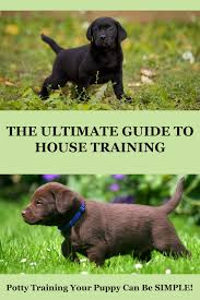 Puppy House Training Chart How To Potty Train A Puppy Easy To Follow Steps And
