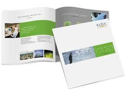 dl layouts brochure design layouts tri fold brochure design red dl stock vector