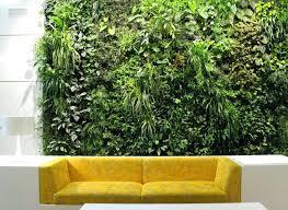 vertical wall garden without prescription vertical wall garden bunnings