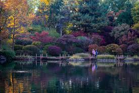 an evening at the missouri botanical garden st louis