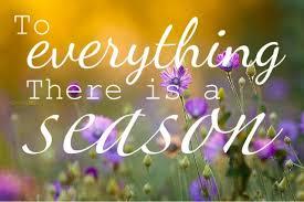 Seasons Change Quotes Amazing Seasons Change Amanda Medlin