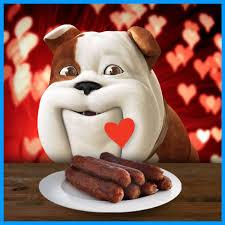 Image result for churchill insurance dog