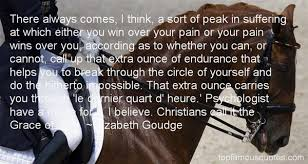 Endurance Quotes Interesting 48 Beautiful Endurance Quotes And Sayings