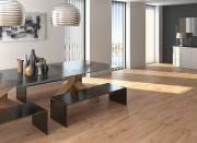 <b>Керамогранит Arcana Ceramica Timber</b> Pino Lap 21,8х89,3 см ...