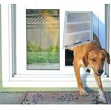 cat door for window diy window cat door flap sash window cat door dog door dog cat door for window