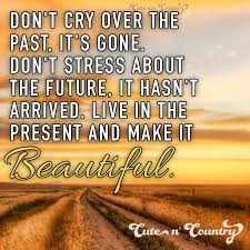 Country Life Quotes And Sayings Mesmerizing Country Life Quotes And Sayings Beauteous Best 48 Country Girl