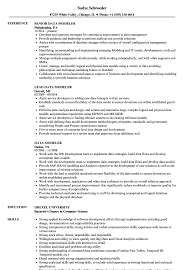 Data Modeler Resume Sample Data Modeler Resume Samples Velvet Jobs 1